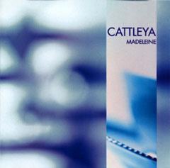 Cattleya - Madeleine