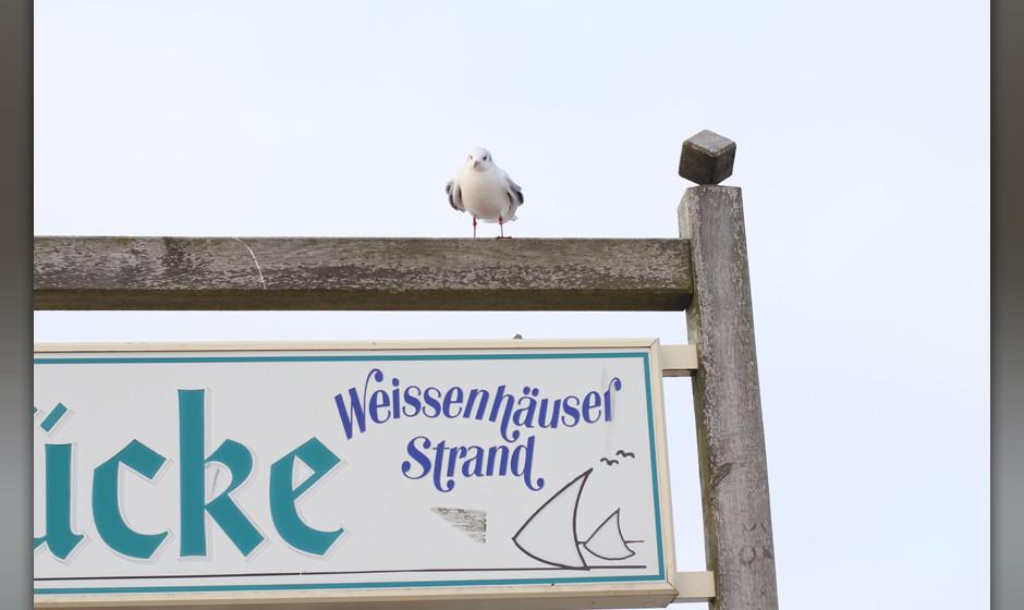 Willkommen am Weissenhäuser Strand!