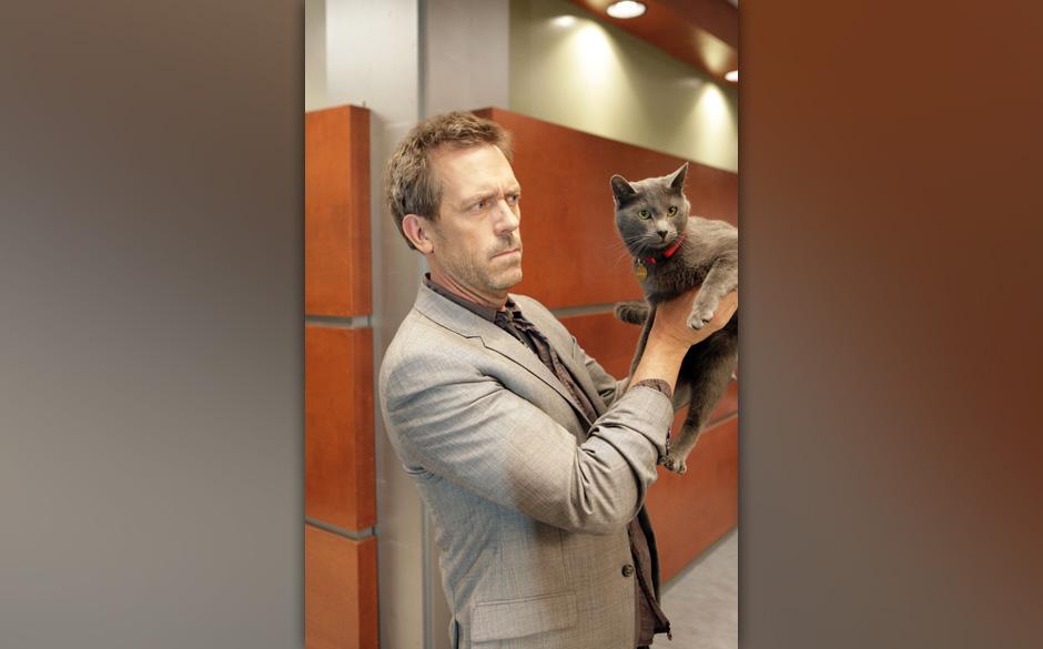 Kann eine Katze den Tod eines Menschen vorhersehen? Eine junge Frau behauptet dies und versetzt House (Hugh Laurie) damit in
