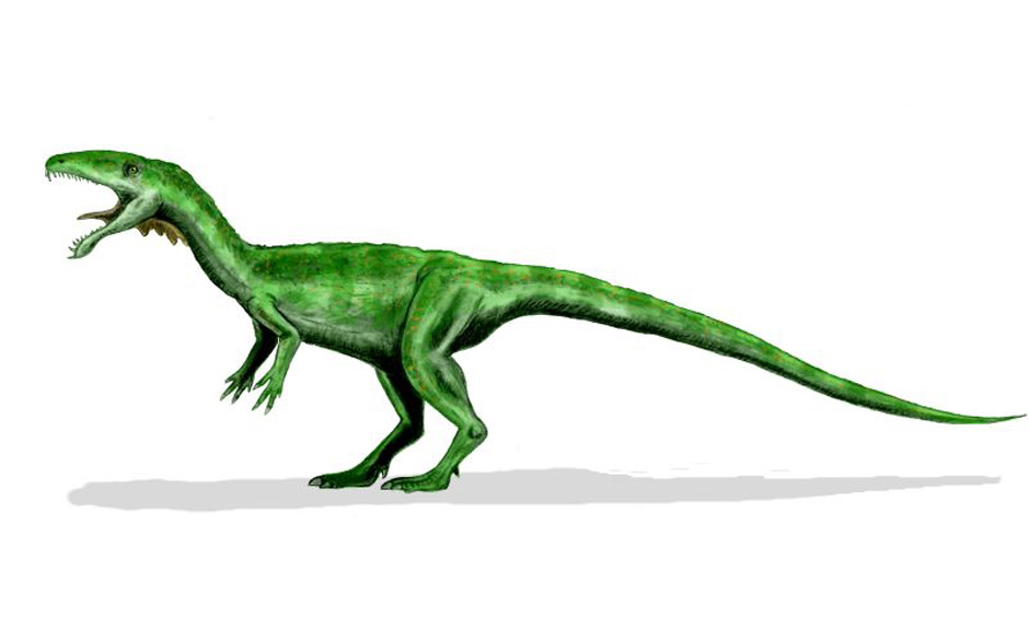 Rockdinosaurier: Masiakasaurus knopfleri (Mark Knopfler)