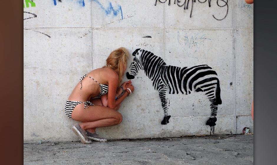 Gemischte Tüte: Zebra