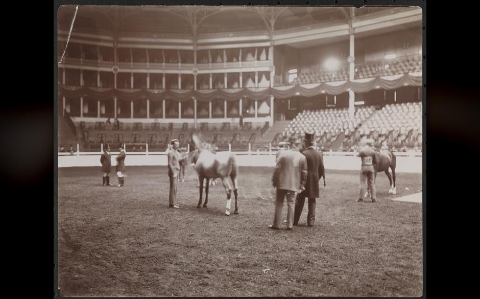 Ein Heim für Pferde.