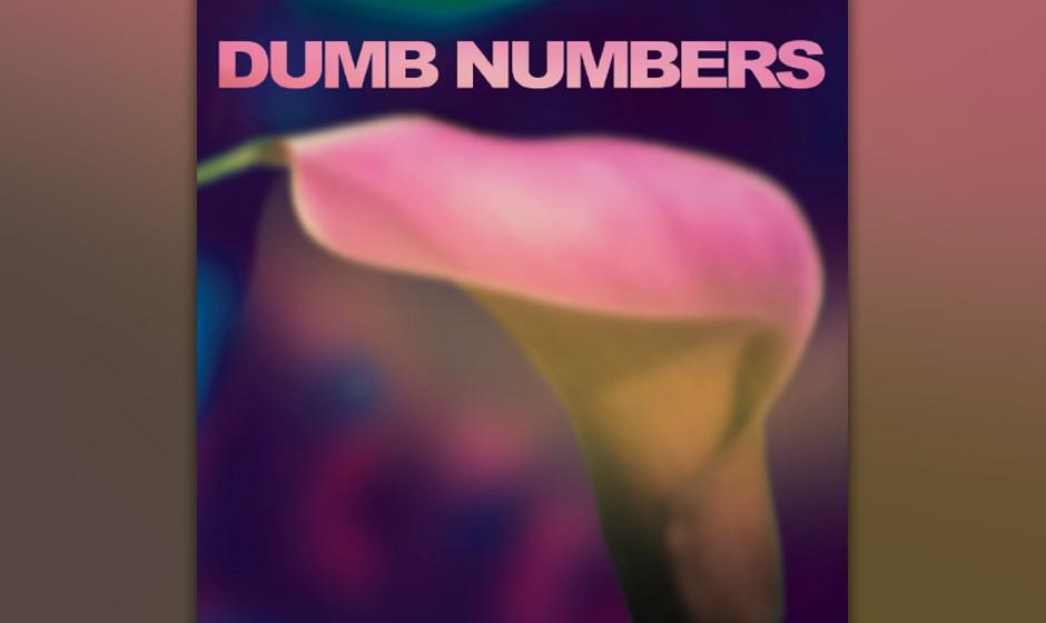 Dumb Numbers - 'Dumb Numbers' (12.8.)