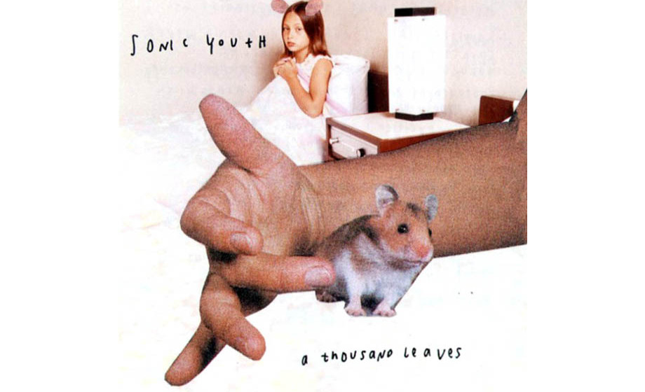 Sonic Youth – A Thousand Leaves