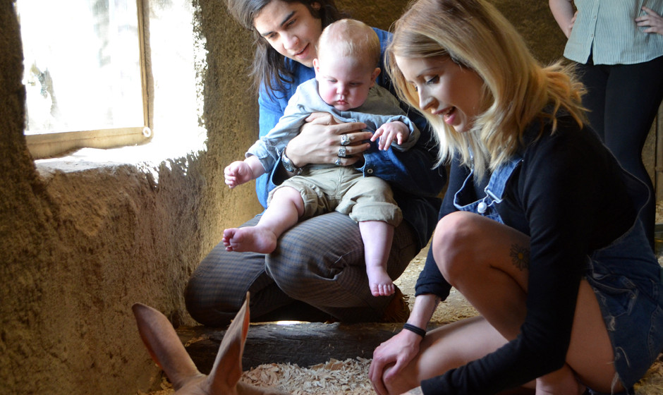 LONDON, UNITED KINGDOM - APRIL 23:  In this handout provided by ZSL London Zoo, A heavily pregnant Peaches Geldof, her husban
