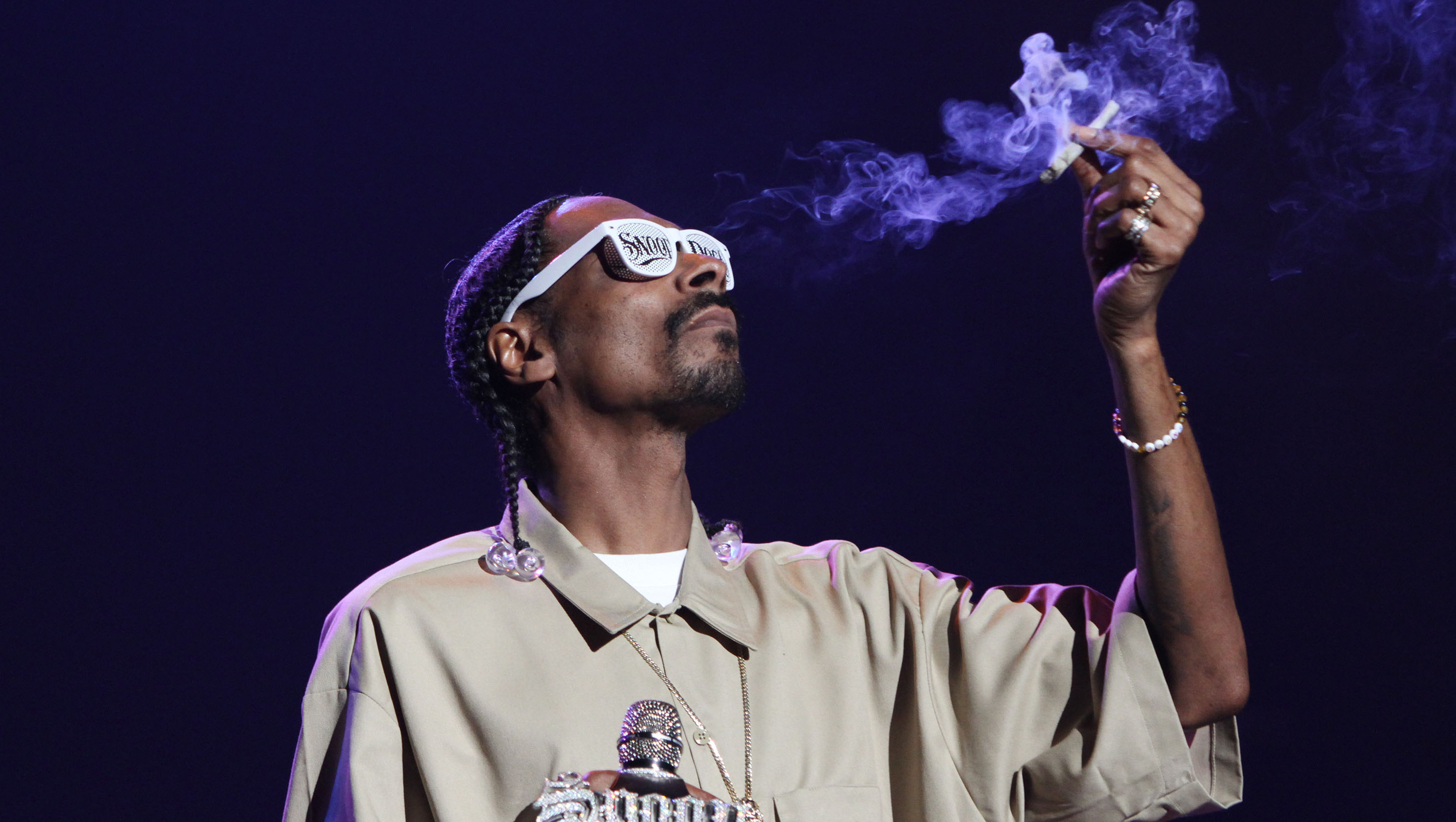 LOS ANGELES, CA - DECEMBER 13:  Snoop Dogg performs in concert at The Wiltern on December 13, 2011 in Los Angeles, California