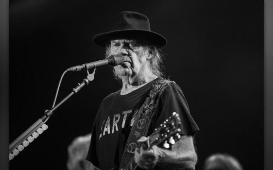 Neil Young, Foire Aux Vins d'Alsace 2014