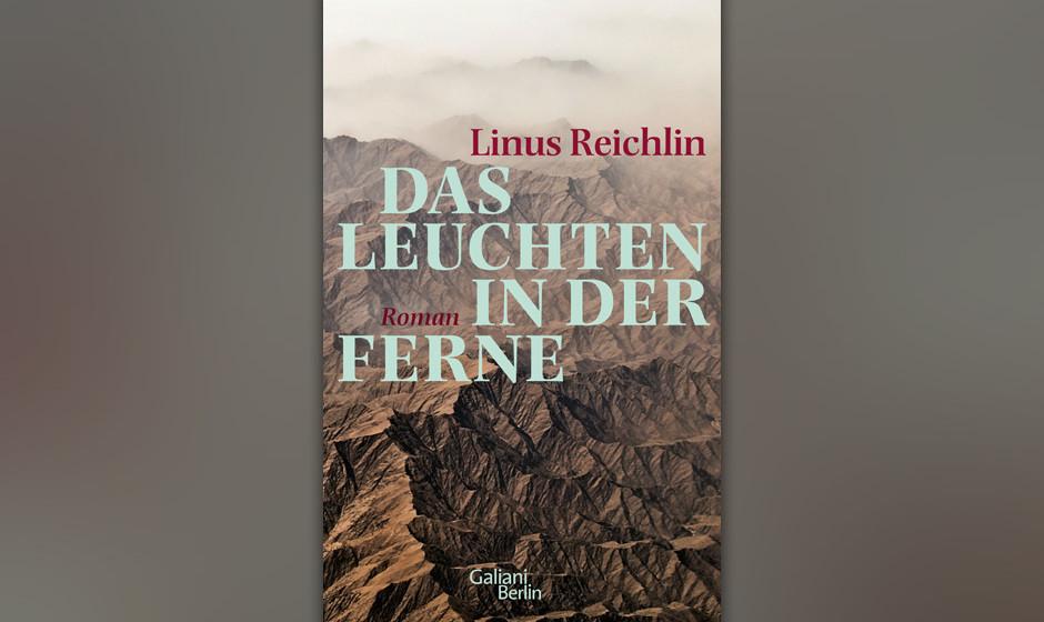 """19. Linus Reichlin: """"Das Leuchten in der Ferne"""" (2013) Kriegsreporter Martens in den Händen der Taliban. Der Todesmarsch"""