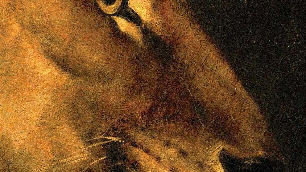 William Fitzsimmons, 'Lions': 2 Sterne. Noch mehr geseufzte Musik des traurigen Bartträgers