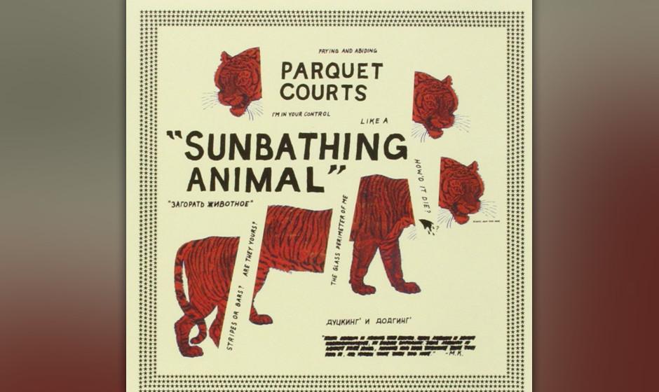 20. Parquet Courts - 'Sunbathing Animal'