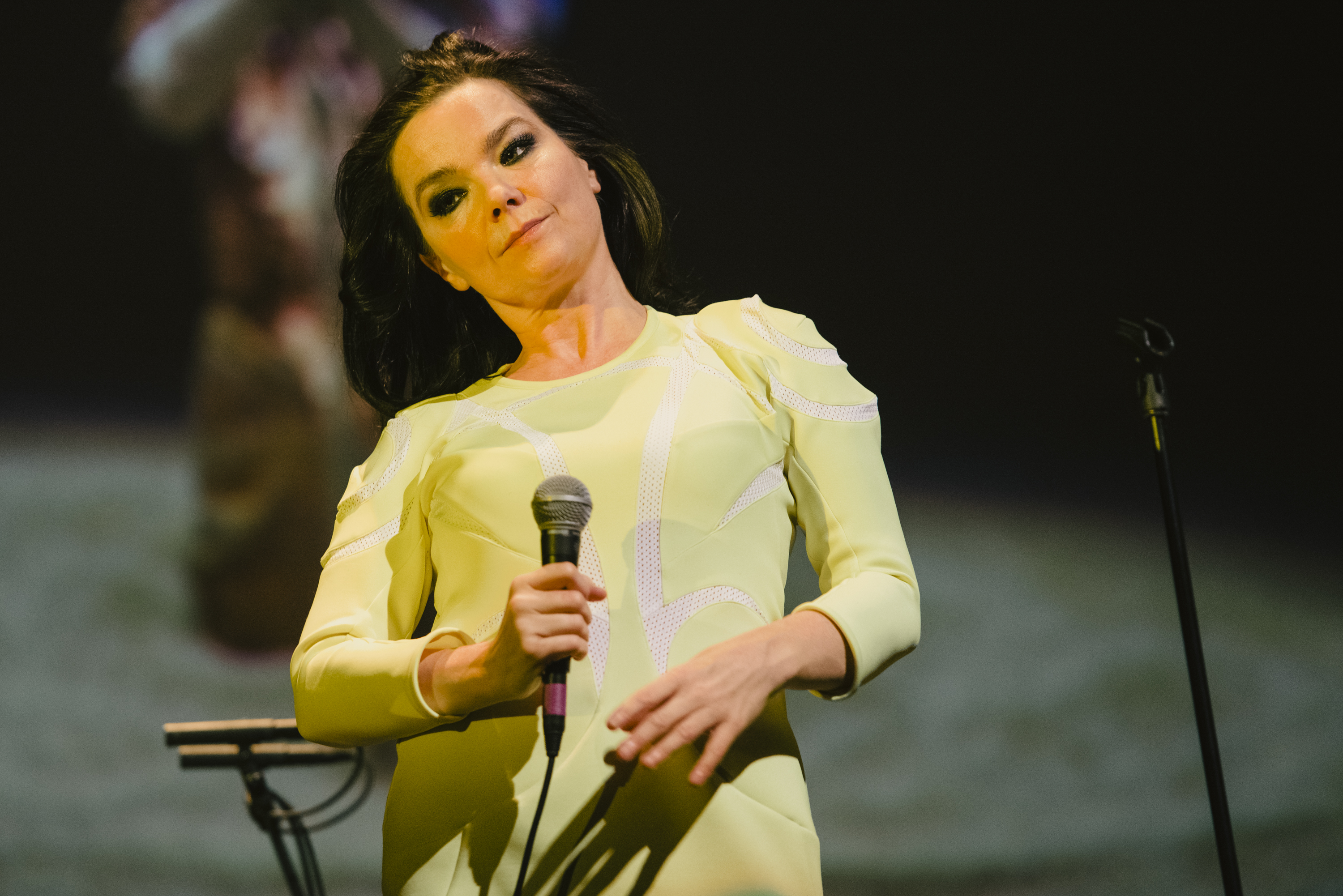 REYKJAVIK, ICELAND - MARCH 18:  Bjork performs at the 'Stopp - Let's Protect the Park' nature benefit concert at Harpa Concer