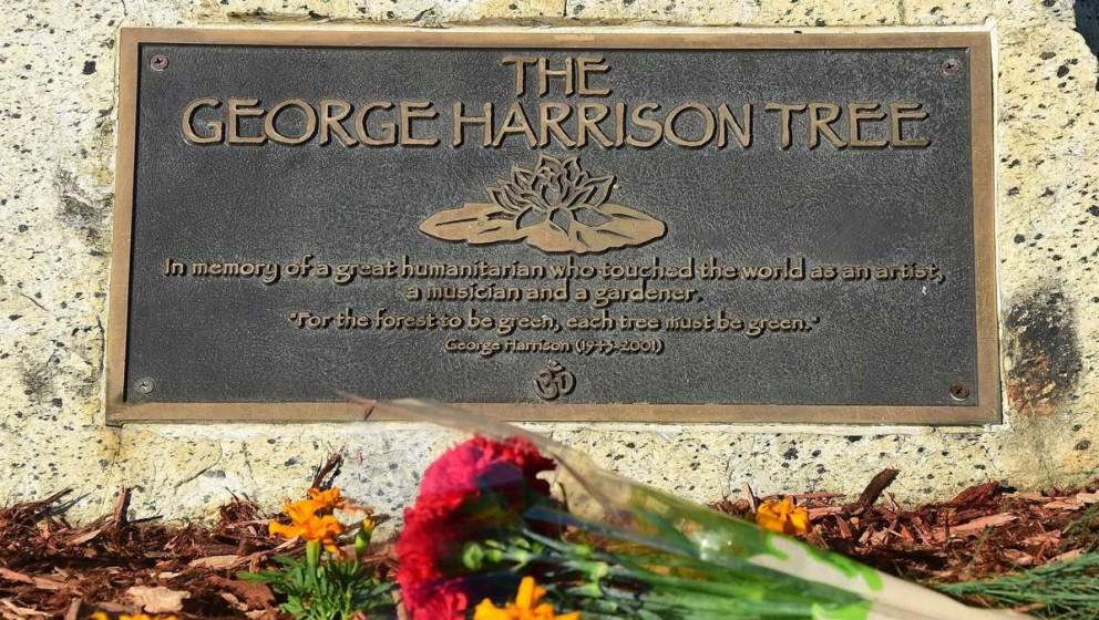 Die Gedenktafel im Griffith Park erinnert an George Harrison, der als großer Humanist geehrt wird