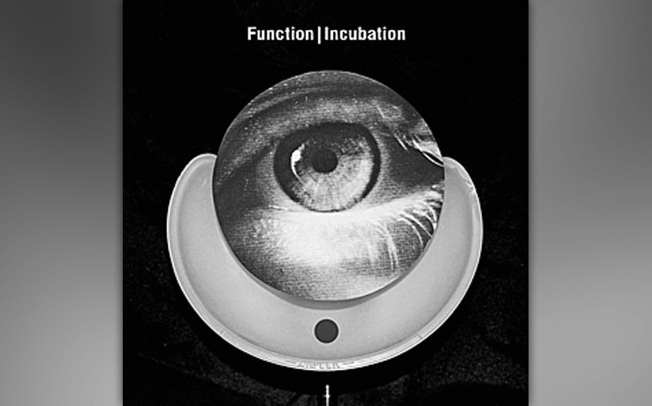 Function - Incubation