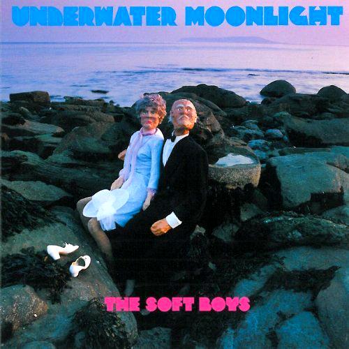 The Soft Boys - 'Underwater Moonlight'  Der große britische Pop-Surrealist Robyn Hitchcock besingt Insekten, die aus seinem