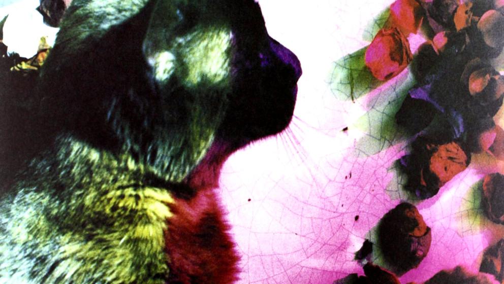 Pale Saints - 'The Comforts Of Madness'  Zu früh für Britpop, zu brüchig für Shoegaze: Die Band um Ian Masters aus Leeds