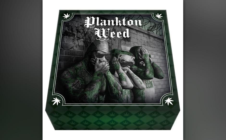 Auf der Eins thront SpongeBozz mit der Debütplatte 'Planktonweed Tape'...