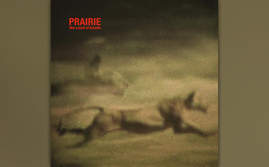 Prairie: like a pack of hounds, 2,5: Der Niederländer verstört mit dunklen Soundscapes.