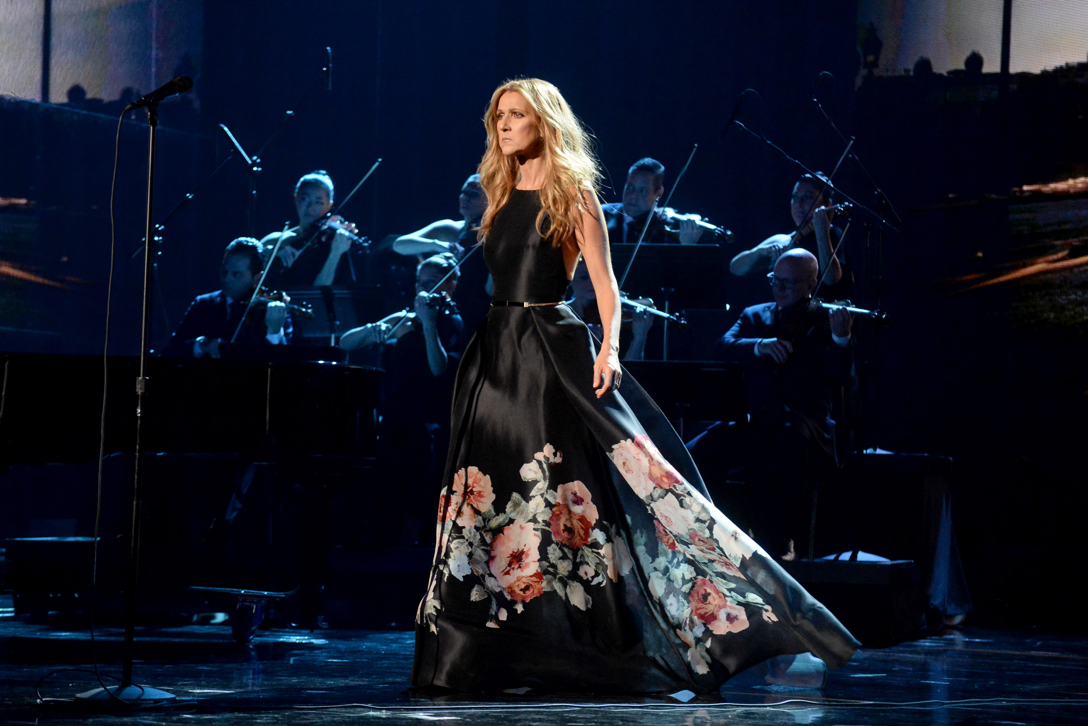 LOS ANGELES, CA - NOVEMBER 22:  Singer Celine Dion performs onstage during the 2015 American Music Awards at Microsoft Theate