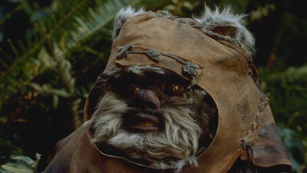 """In """"Episode VII"""" wird es leider kein Wiedersehen mit Wicket oder anderen Ewoks geben."""