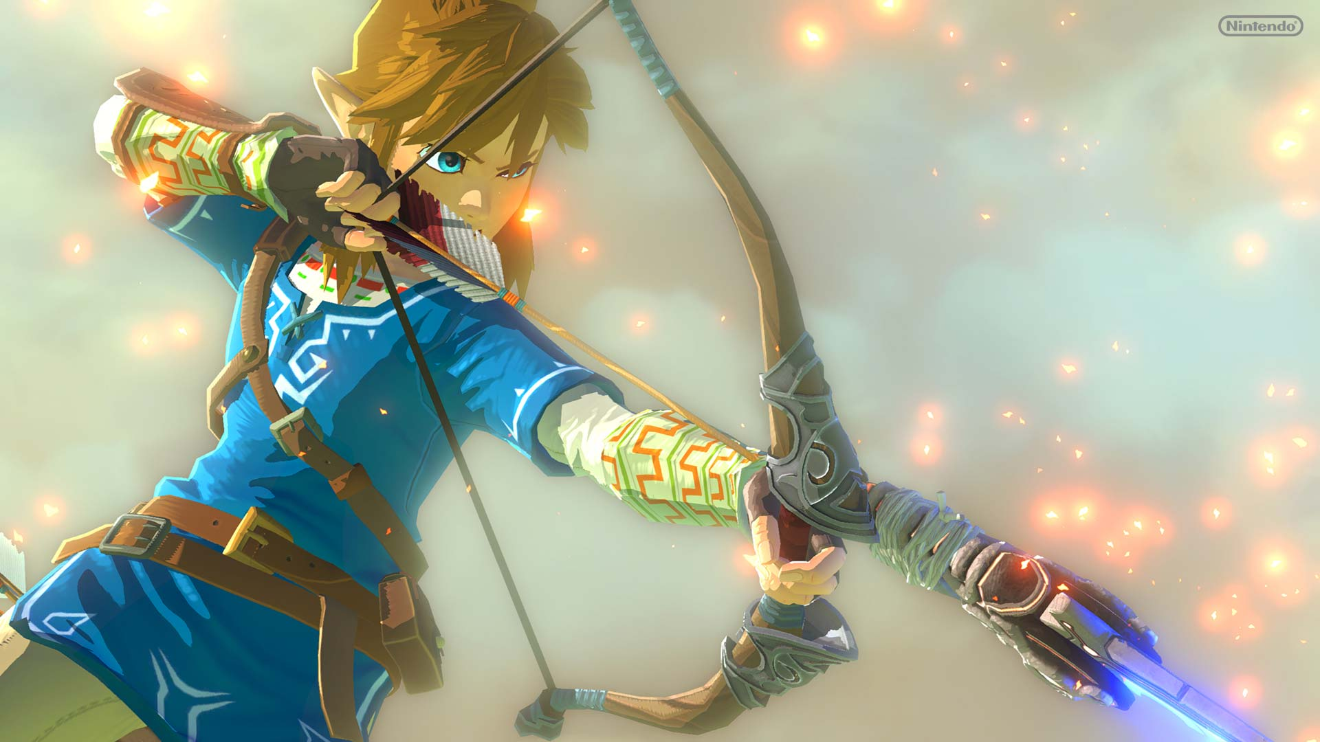 """Link ist der Held und die Spielfigur aus der """"The Legend Of Zelda""""-Reihe"""