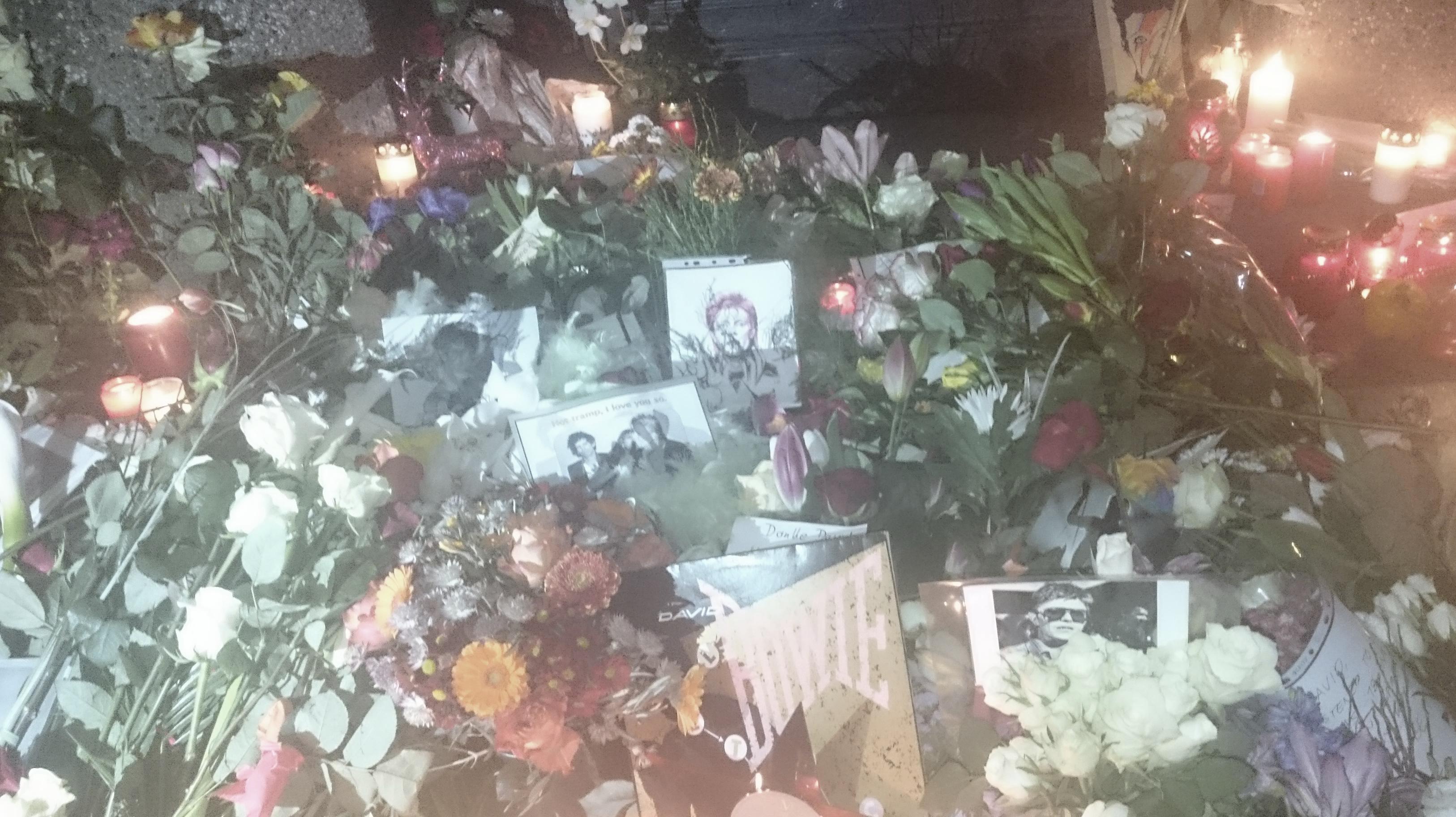 Blumen für Bowie