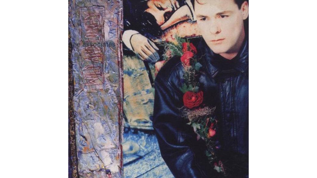 """The Associates - """"Wild And Lonely"""" (1990)  1980 weckte das Debüt der Associates, """"The Affectionate Punch"""", die schö"""