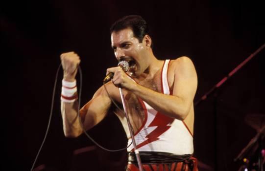 """Freddie Mercury. """"Bohemian Rhapsodiy"""" soll ein Biopic über Queen werden."""