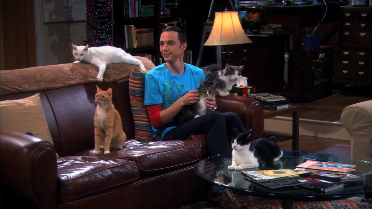 "Sheldon Cooper ist der Ober-Nerd in ""Big Bang Theory"""