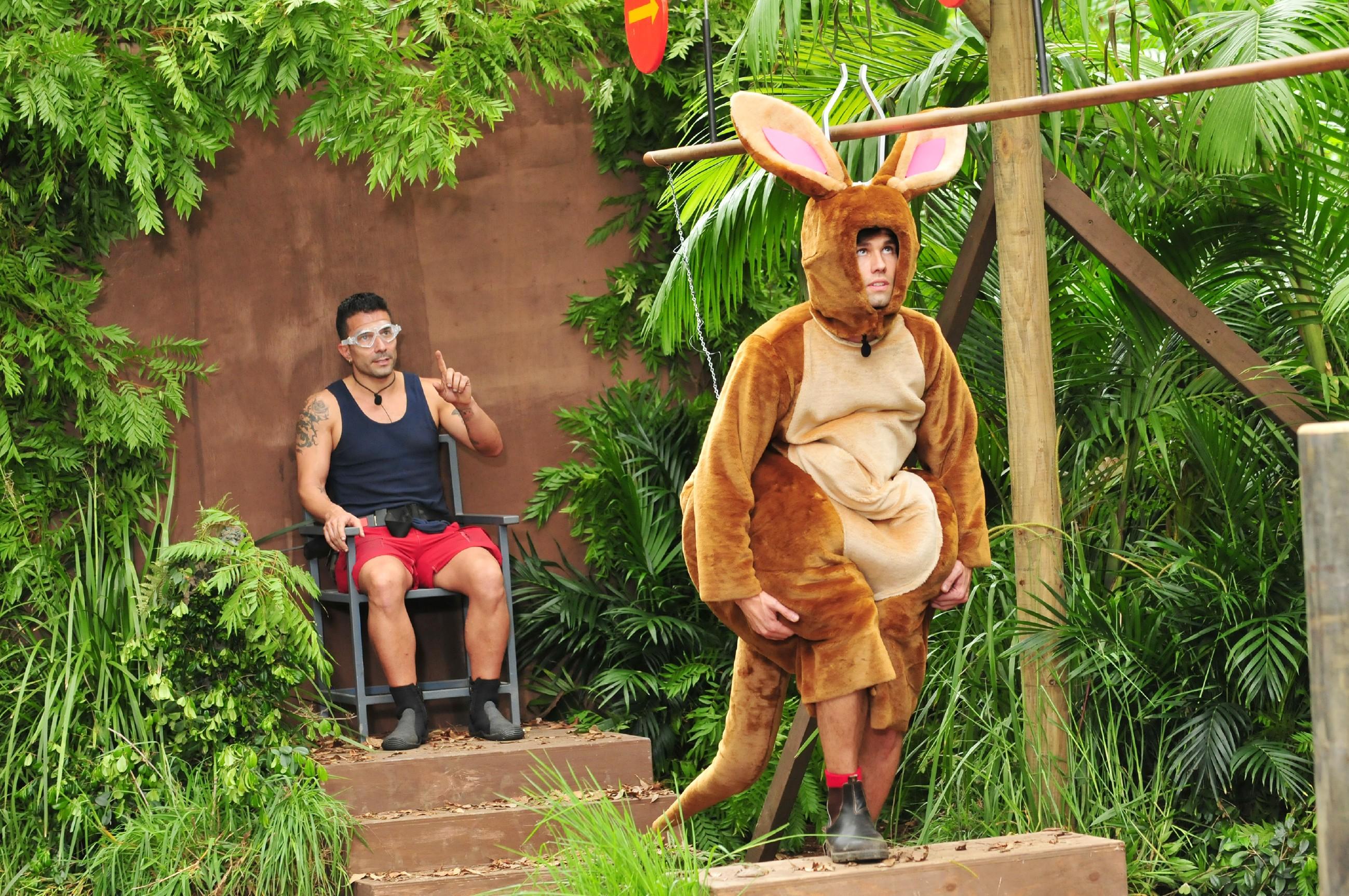 Dschungelcamp Was Ist Echt Bei Ibes Und Was Ist