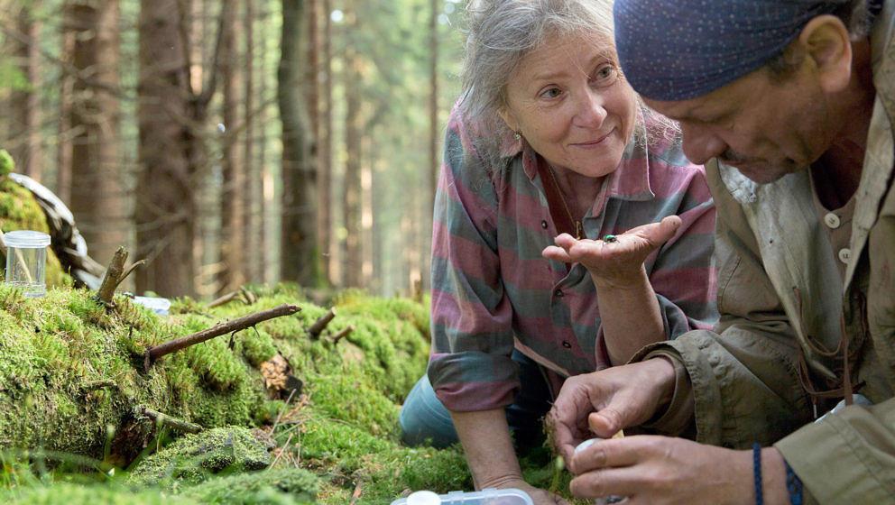 Agnieszka Mandat und Miroslav Krobot in einer Szene des Films «Pokot»