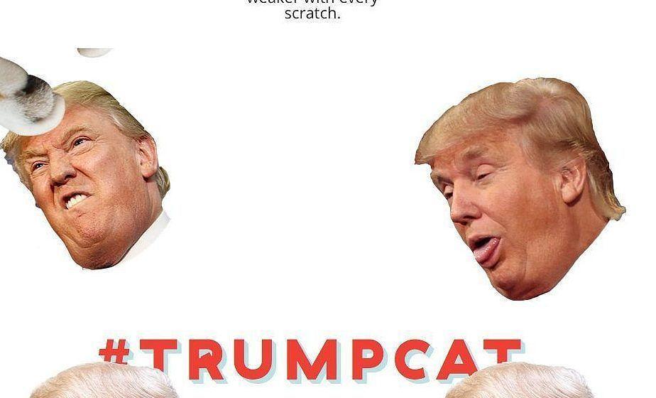 Trumps beste Gesichtsausdrücke mit Katzenpfoten zerkratzen kann man auf kittenfeed.com – der US-Präsident erwägt eine Kl