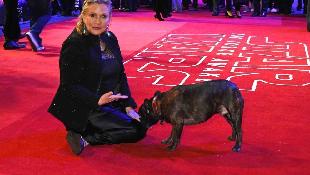 LONDON, ENGLAND - DECEMBER 16:  Carrie Fisher and dog Gary attends the European Premiere of 'Star Wars: The Force Awakens' in