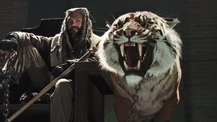 Ezekiel und sein Tiger Shiva