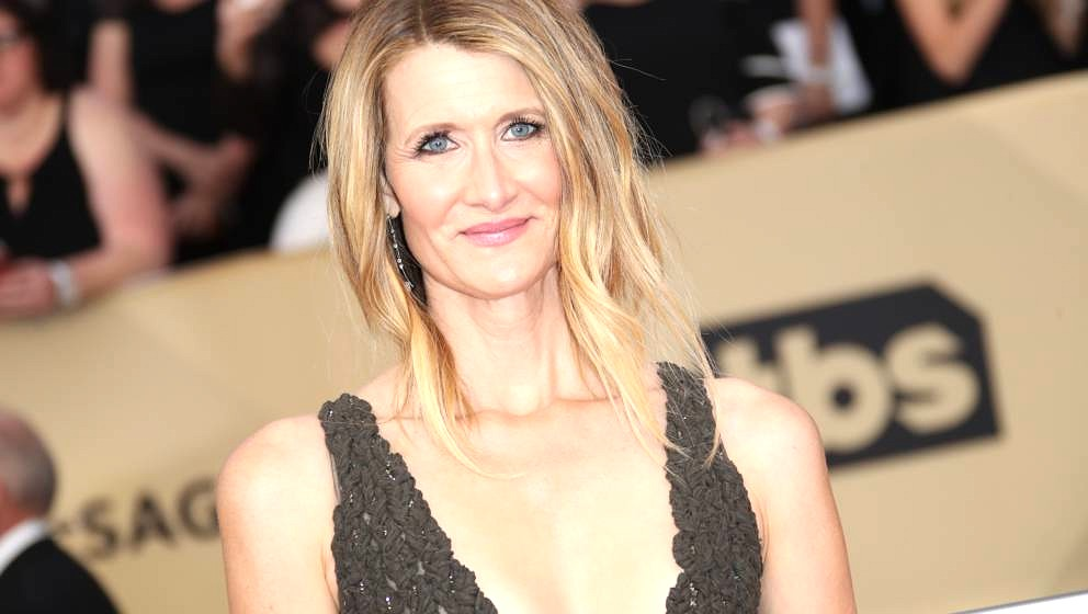 LOS ANGELES, CA - JANUARY 21: Laura Dern arrives at the 24th Annual Screen Actors Guild Awards at The Shrine Auditorium on Ja