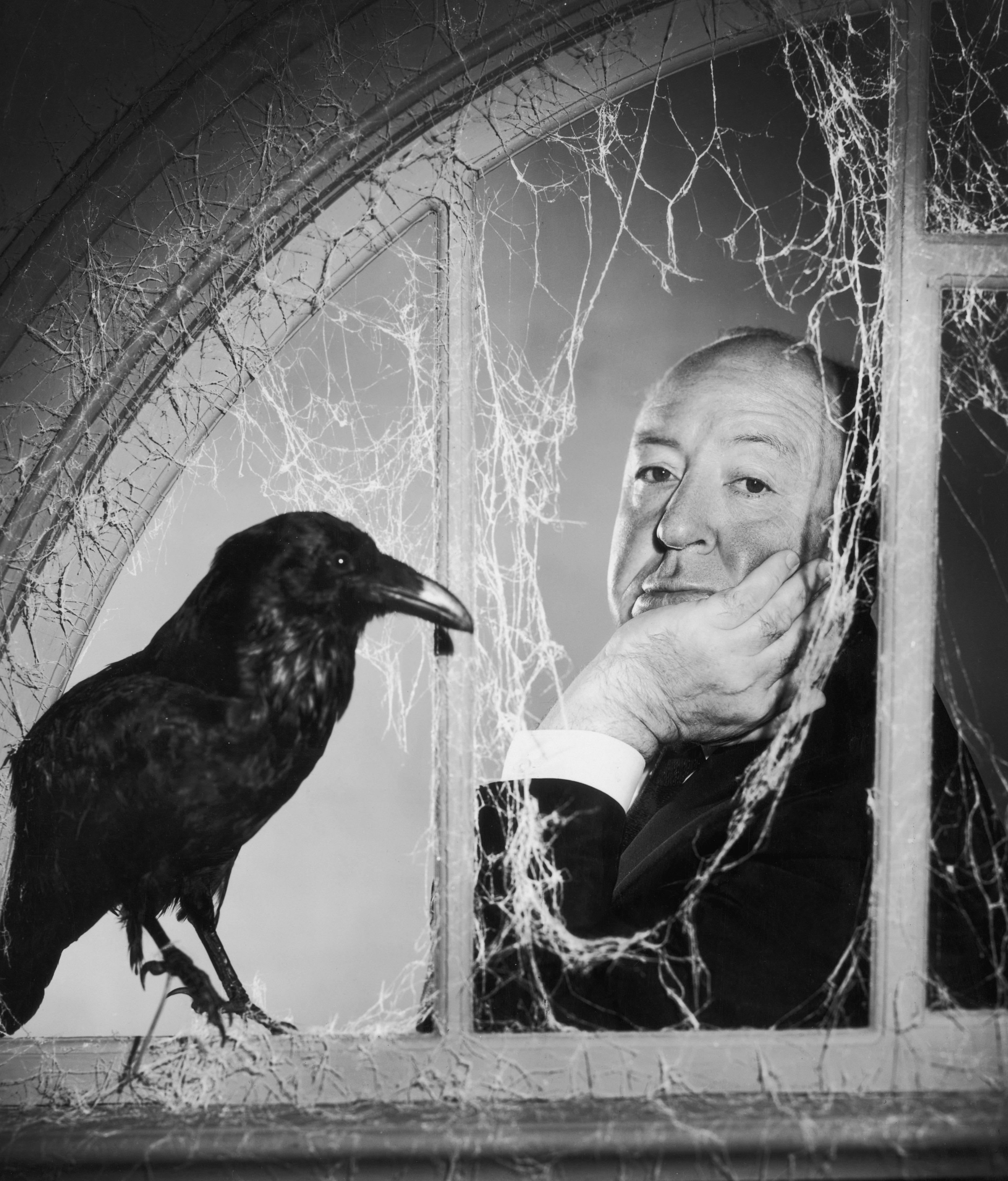 Hitchcock und die Vögel