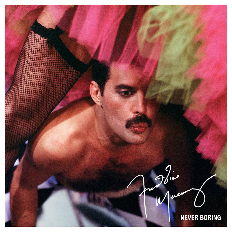 """Gewinnen: Freddie Mercury - """"Never..."""