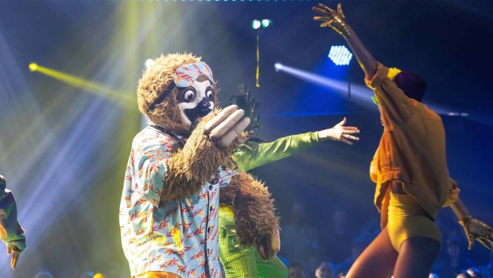 """Einer der Favoriten auf den Sieg bei """"The Masked Singer"""": das 'Faultier'"""